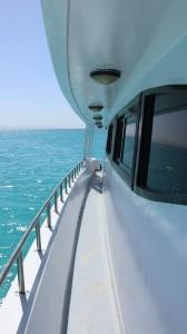 sea king 1